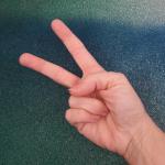 Binär zählen mit Fingern: Sechs
